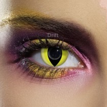 EYE ACCESSORIES - CAT EYE - 1 DAY USE