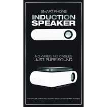 INDUCTION SPEAKER