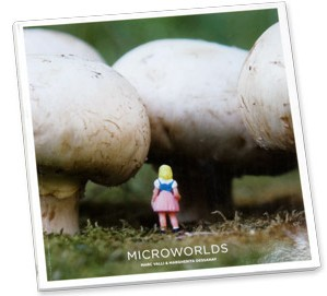 MICROWORLDS BOOK