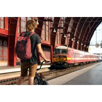 Mr SERIOUS - WANDERER BACKPACK - MAROON