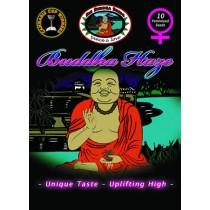 BIG BUDDHA SEEDS - BUDDHAS HAZE - 10 Feminised
