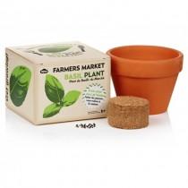 FARMERS MARKET - BASIL