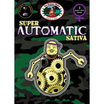 BIG BUDDHA SEEDS - SUPER AUTO SATIVA - 5 Feminised
